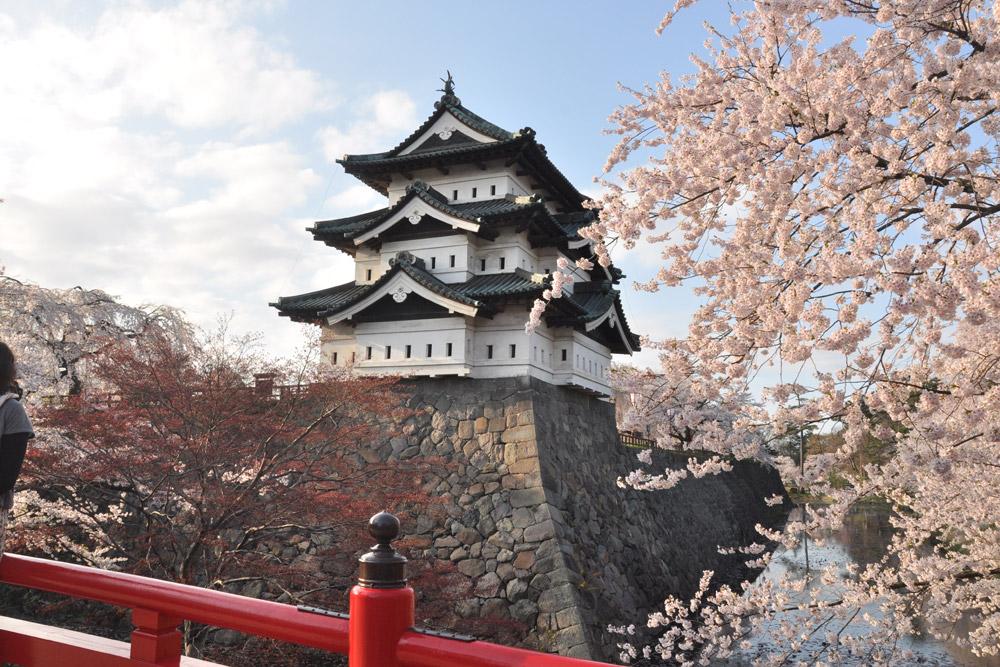 全国的にも有名な桜の名所、弘前城のある弘前公園です。弘前市の中心部に位置する、総面積約49万2000平方メートル(約14万9000坪)にも及ぶ広大な敷地面積を誇っています