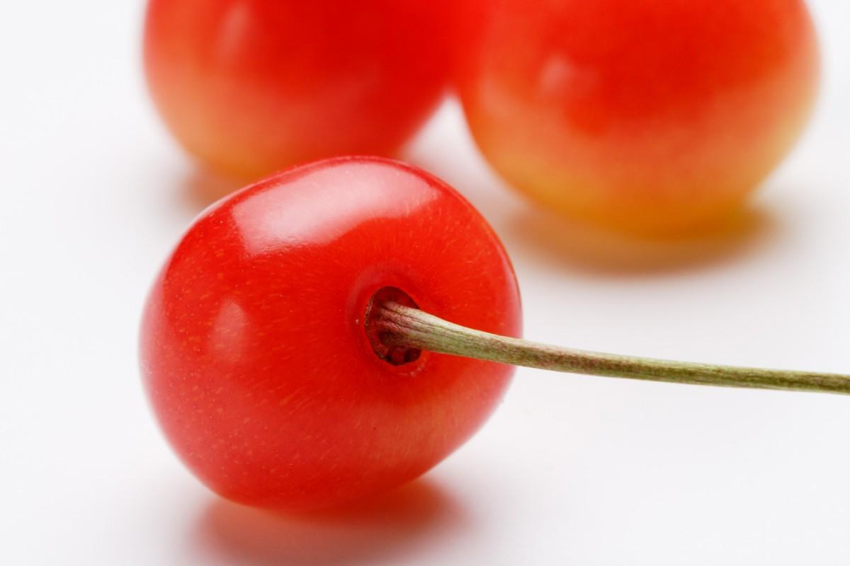 青森県鶴田町では佐藤錦とナポレオンという品種のさくらんぼが栽培されています