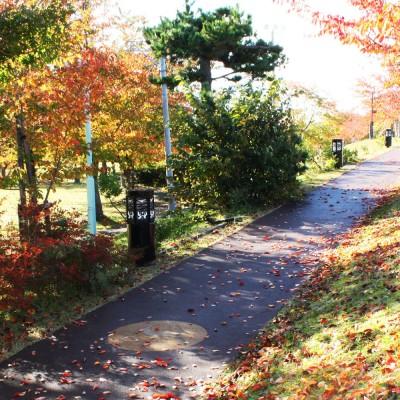 歩くことで出逢えるヒト・モノ・コト。あの路地を曲がると何が待っているのだろう?陸奥鶴田駅を拠点に気ままに歩く、桜の季節におすすめの、ゆる~り、鶴田さんぽ