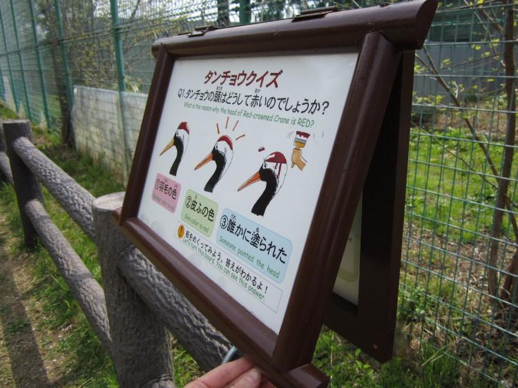丹頂鶴自然公園にタンチョウクイズ登場