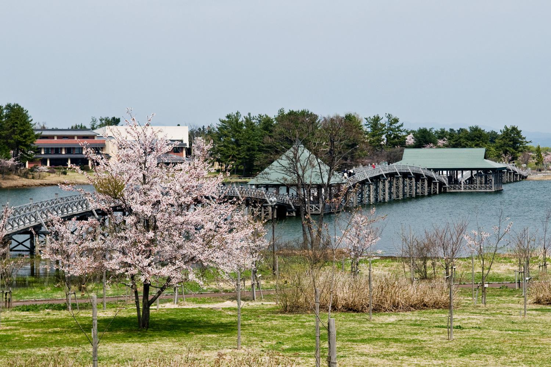 春の津軽富士見湖