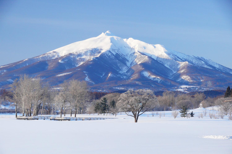 棟方公寿さんの故郷である青森県鶴田町から見える岩木山。