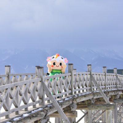 鶴の舞橋とつるりん