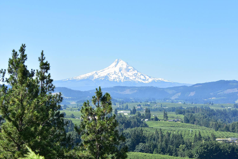 フッドリバー市はオレゴン州で最も標高の高いフッド山の麓に位置している街